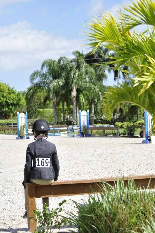 Tuesday Equitation Shows – Wellington