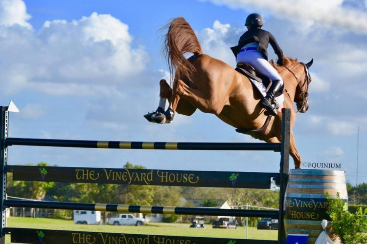 Show Jumping + Wine Tasting: Wellington's Napa Valley Hosts Turf Tour Week 5